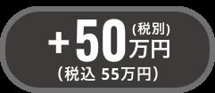 +税別200万円(税込220万円)